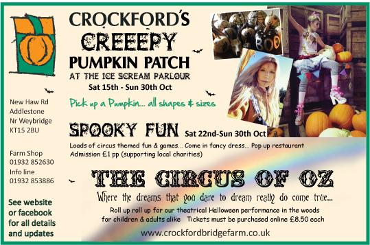 crockford-pumpkin-patch